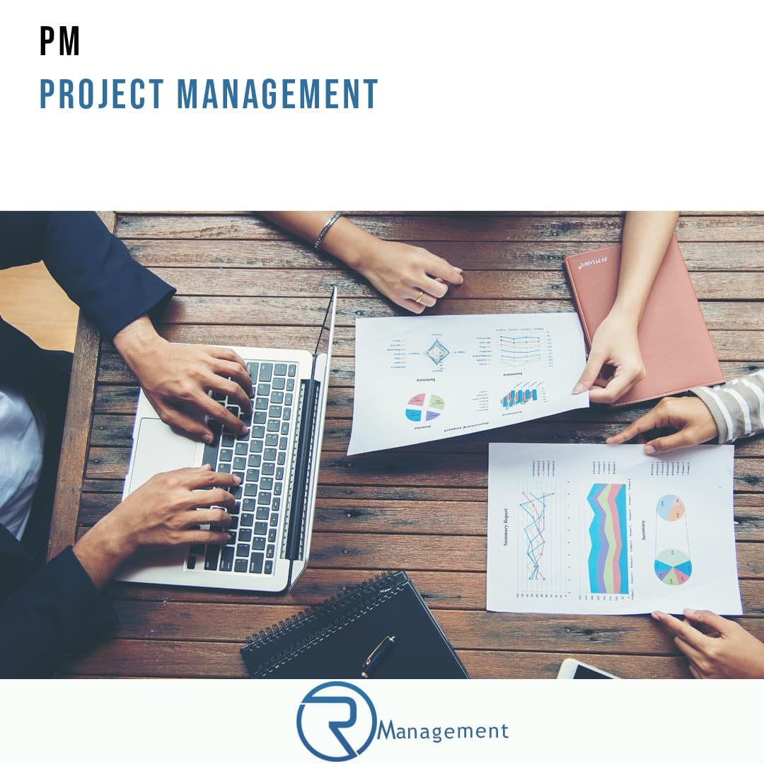 PM Project Manager